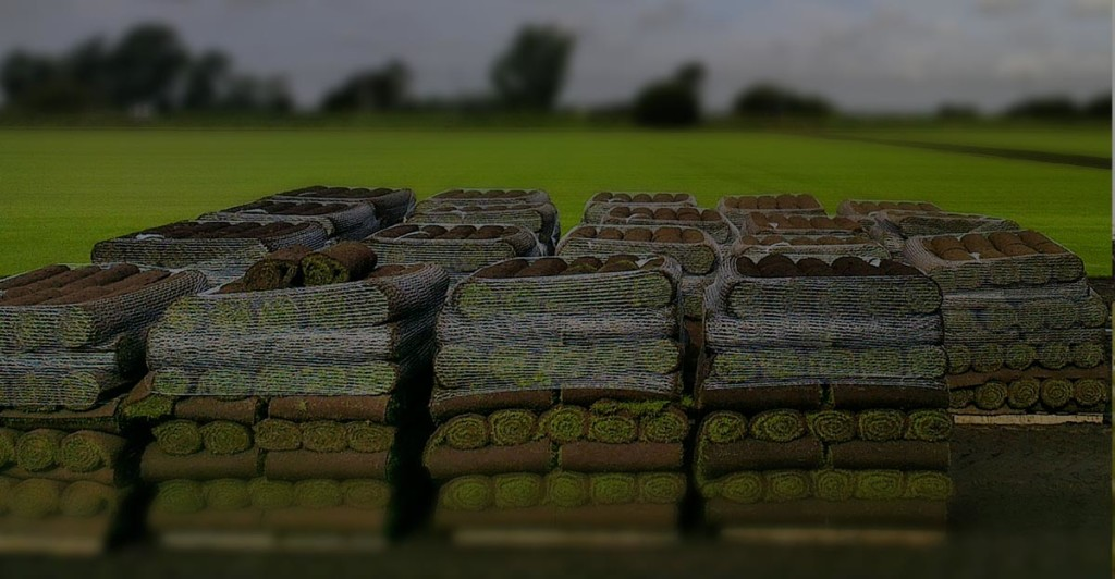pallets of turf