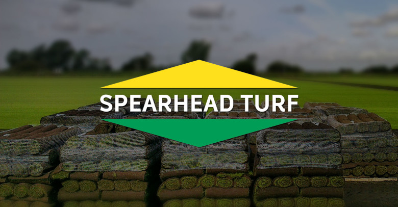 spearhead-turf-brand