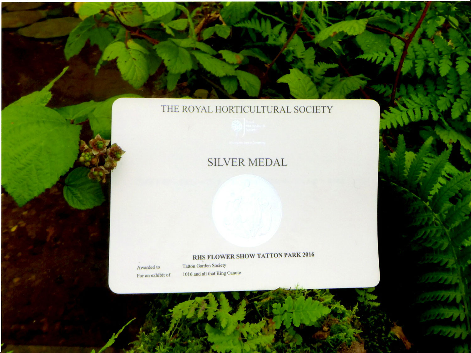 silver medal from tatton park flower show