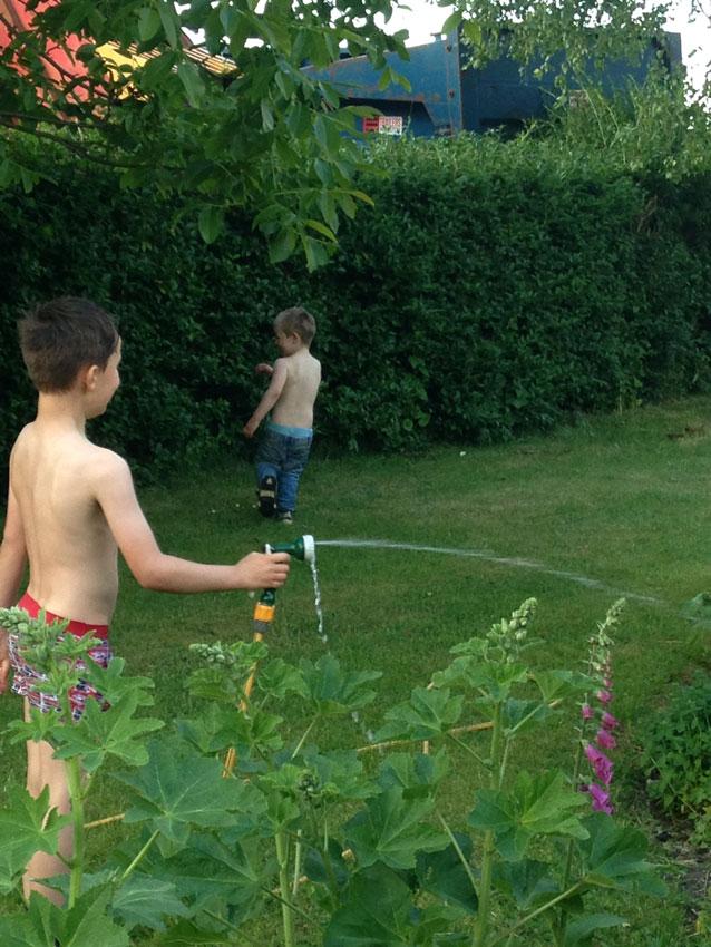 boys playing on garden lawn