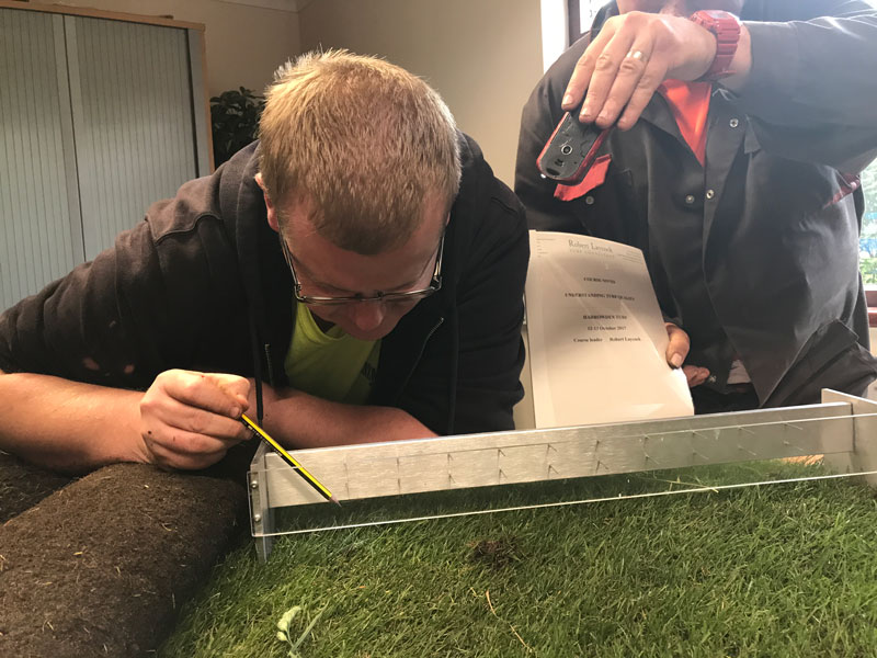 assessing turf quality standards